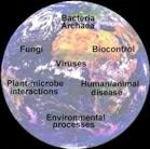 Logo for Microbial World